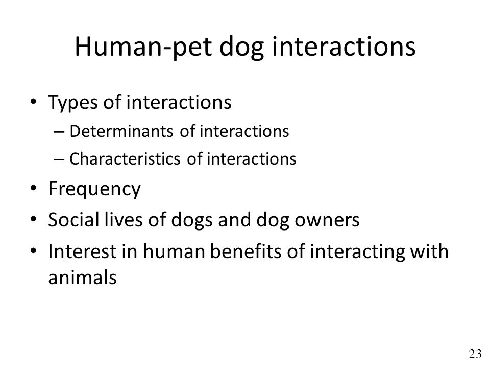 Human-pet dog interactions Types of interactions – Determinants of interactions – Characteristics of interactions Frequency Social lives of dogs and dog owners Interest in human benefits of interacting with animals 23