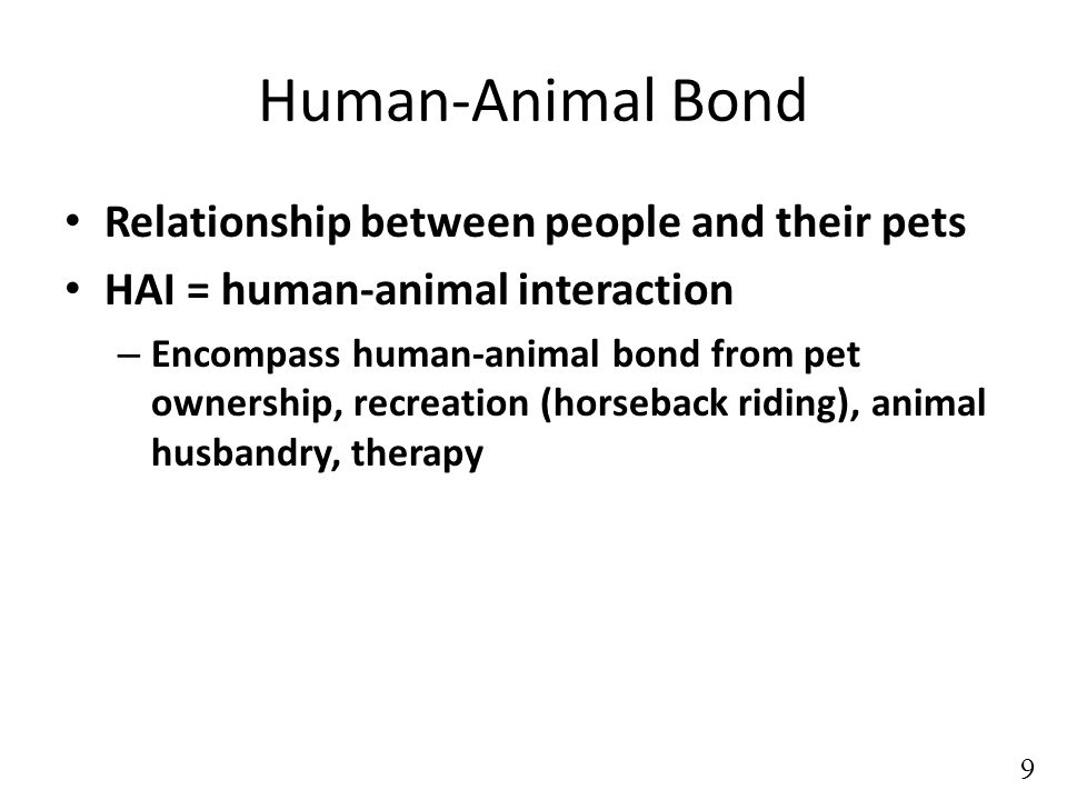 Human-Animal Bond Relationship between people and their pets HAI = human-animal interaction – Encompass human-animal bond from pet ownership, recreation (horseback riding), animal husbandry, therapy 9
