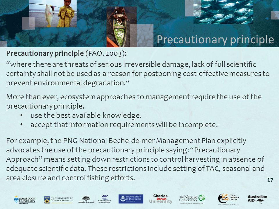 17 Precautionary principle Precautionary principle (FAO, 2003): where there are threats of serious irreversible damage, lack of full scientific certainty shall not be used as a reason for postponing cost-effective measures to prevent environmental degradation. More than ever, ecosystem approaches to management require the use of the precautionary principle.