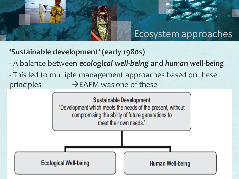 3 Ecosystem approaches 'Sustainable development' (early 1980s) - A balance between ecological well-being and human well-being - This led to multiple management approaches based on these principles  EAFM was one of these