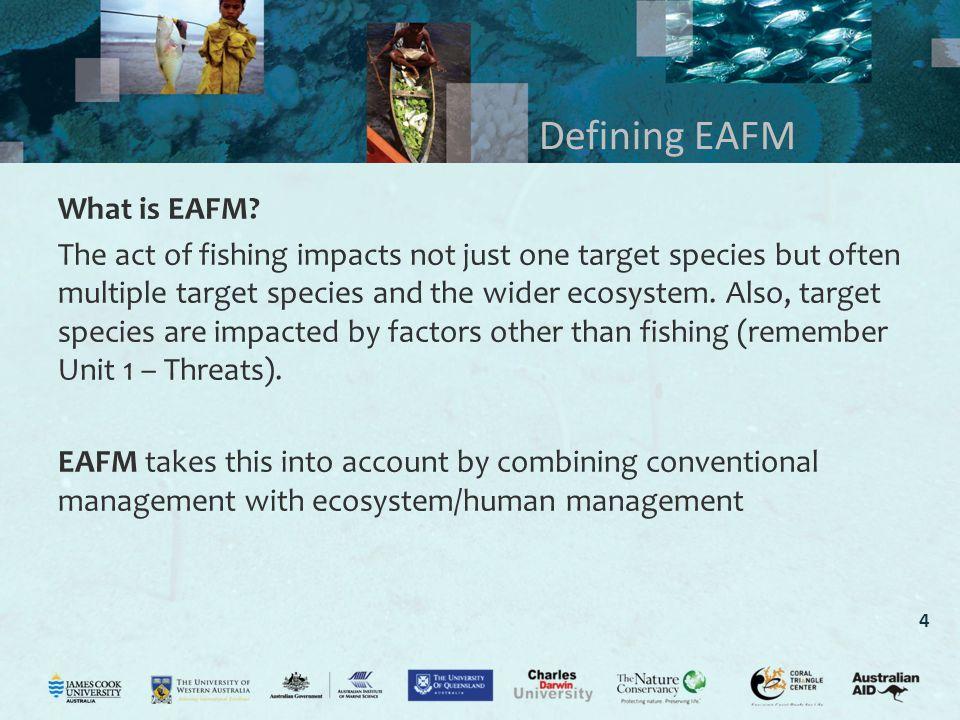 4 Defining EAFM What is EAFM.
