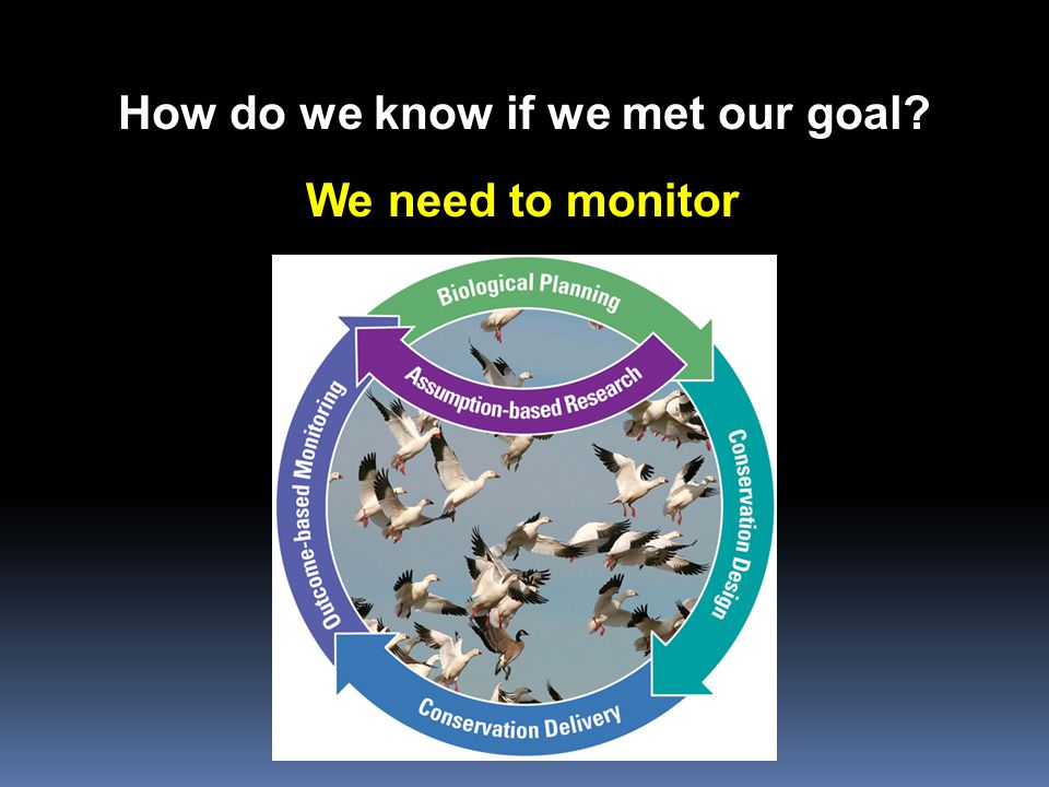 How do we know if we met our goal? We need to monitor