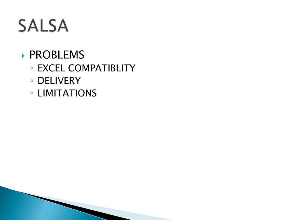  PROBLEMS ◦ EXCEL COMPATIBLITY ◦ DELIVERY ◦ LIMITATIONS