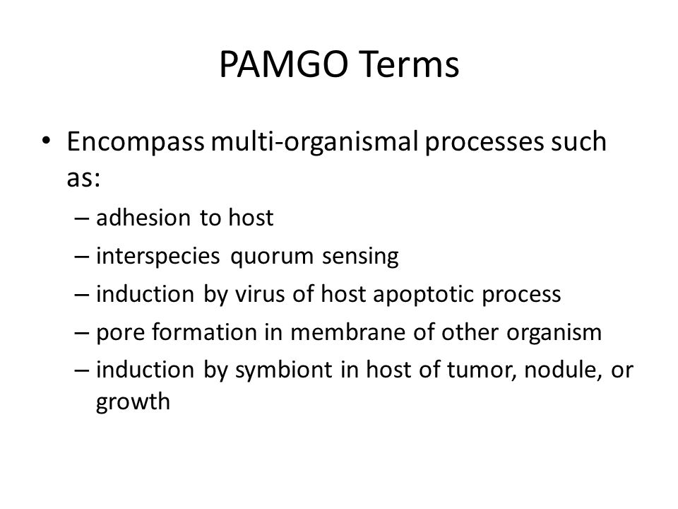 PAMGO Terms Encompass multi-organismal processes such as: – adhesion to host – interspecies quorum sensing – induction by virus of host apoptotic process – pore formation in membrane of other organism – induction by symbiont in host of tumor, nodule, or growth