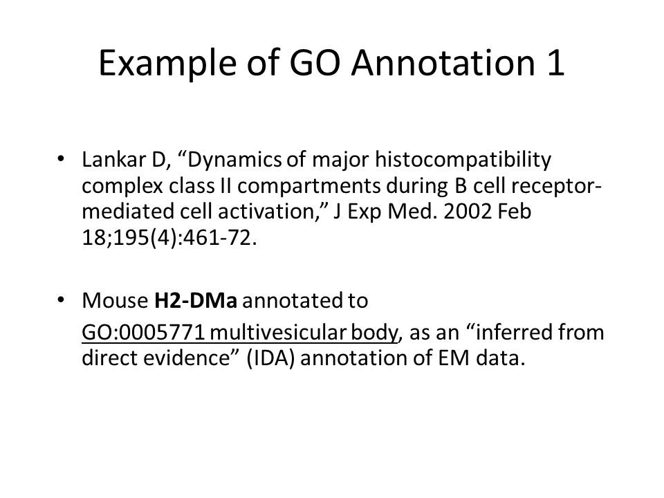 Example of GO Annotation 1 Lankar D, Dynamics of major histocompatibility complex class II compartments during B cell receptor- mediated cell activation, J Exp Med.