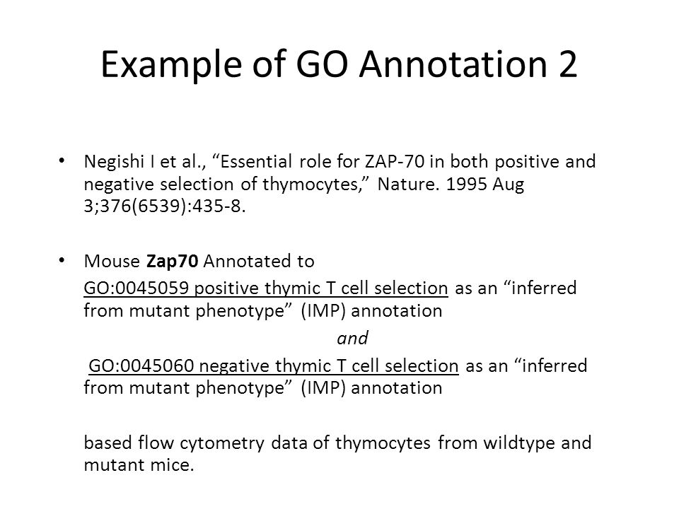 Example of GO Annotation 2 Negishi I et al., Essential role for ZAP-70 in both positive and negative selection of thymocytes, Nature.