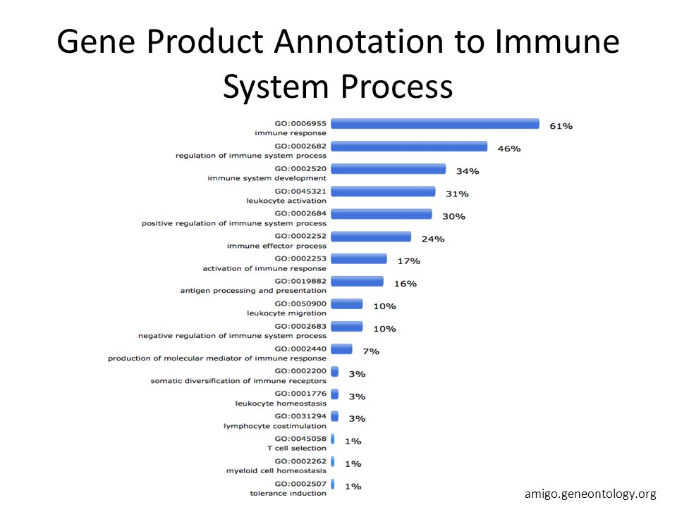 Gene Product Annotation to Immune System Process amigo.geneontology.org