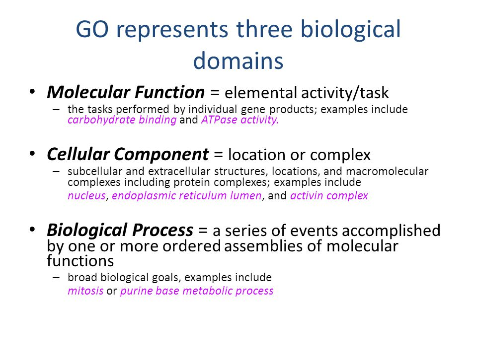 GO represents three biological domains Molecular Function = elemental activity/task – the tasks performed by individual gene products; examples include peptide antigen binding and cytidine deaminase activity.