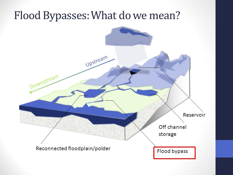 Flood Bypasses: What do we mean.