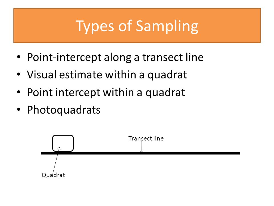 Types of Sampling Point-intercept along a transect line Visual estimate within a quadrat Point intercept within a quadrat Photoquadrats Transect line Quadrat