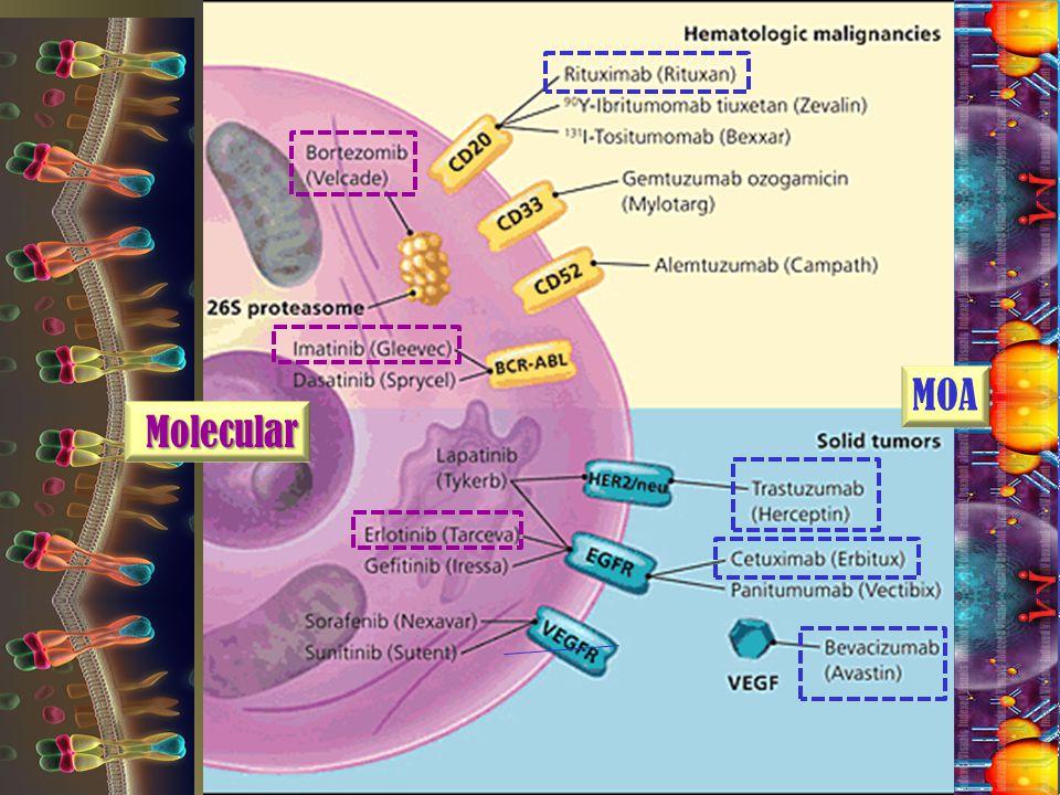 Molecular Molecular MOA