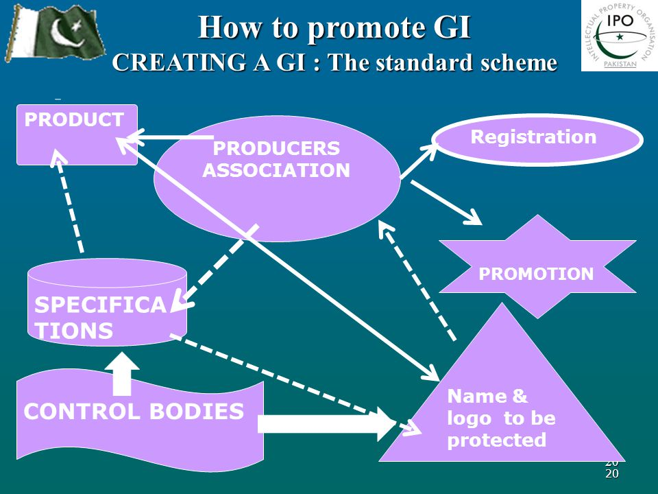 20 20 How to promote GI CREATING A GI : The standard scheme PRODUCT PRODUCERS ASSOCIATION SPECIFICA TIONS Name & logo to be protected Registration PROMOTION CONTROL BODIES