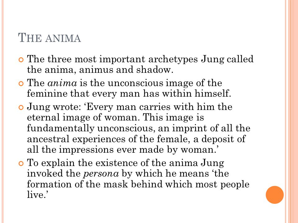 T HE ANIMA The three most important archetypes Jung called the anima, animus and shadow.
