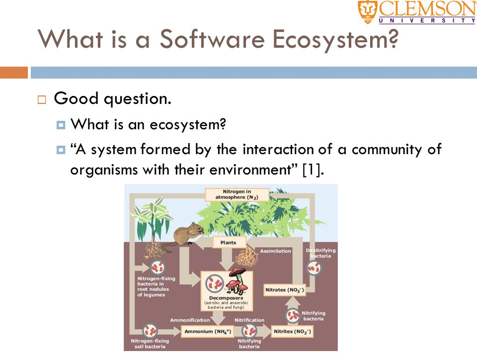 """What is a Software Ecosystem?  Good question.  What is an ecosystem?  """"A system formed by the interaction of a community of organisms with their en"""