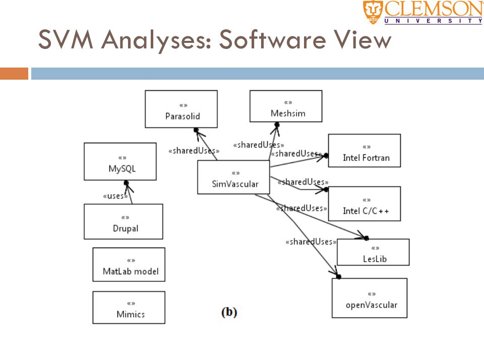 SVM Analyses: Software View