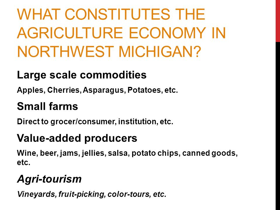 A COLLECTIVE VISION FOR THE REGION'S AG ECONOMY Our Food System Partners Share this Goal: By the year 2020, 20% of northwest Michigan food will be supplied by local growers and food entrepreneurs.