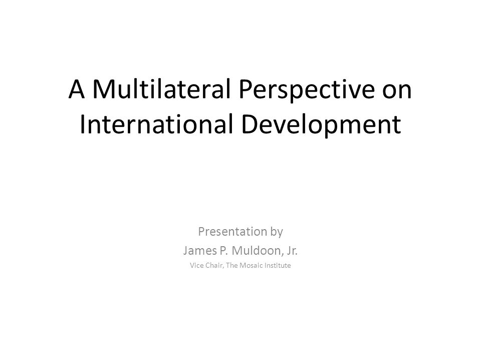 A Multilateral Perspective on International Development Presentation by James P. Muldoon, Jr. Vice Chair, The Mosaic Institute