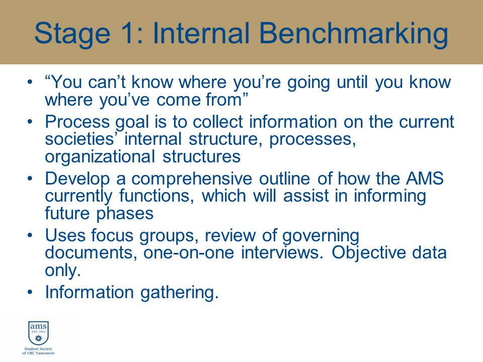 Stage 1: Internal Benchmarking You can't know where you're going until you know where you've come from Process goal is to collect information on the current societies' internal structure, processes, organizational structures Develop a comprehensive outline of how the AMS currently functions, which will assist in informing future phases Uses focus groups, review of governing documents, one-on-one interviews.