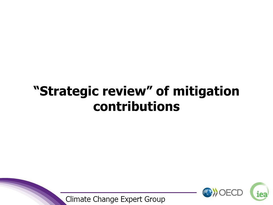 2 Climate Change Expert Group Strategic review of mitigation contributions