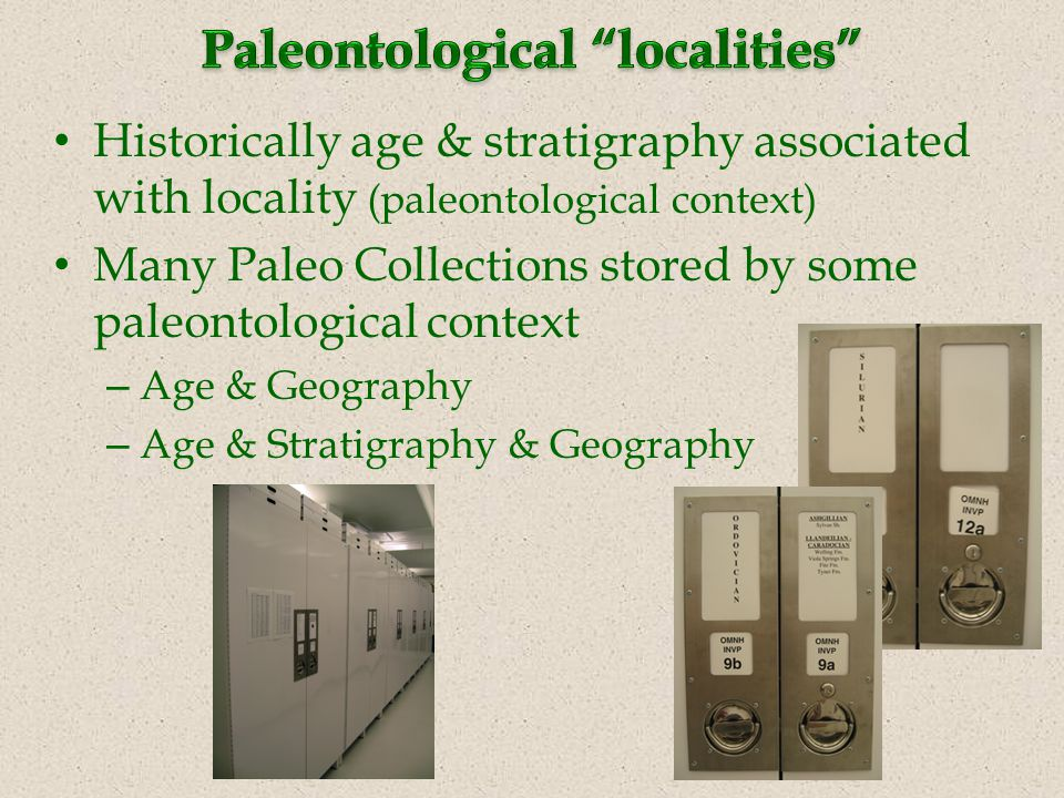 Historically age & stratigraphy associated with locality (paleontological context) Many Paleo Collections stored by some paleontological context – Age & Geography – Age & Stratigraphy & Geography