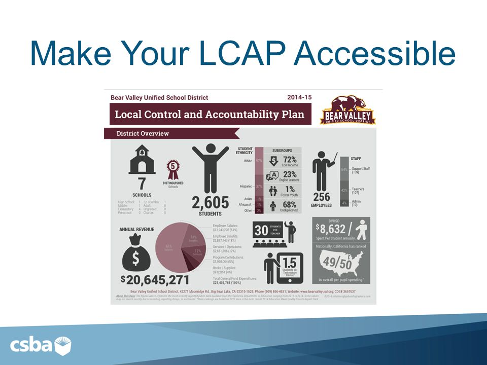 Make Your LCAP Accessible