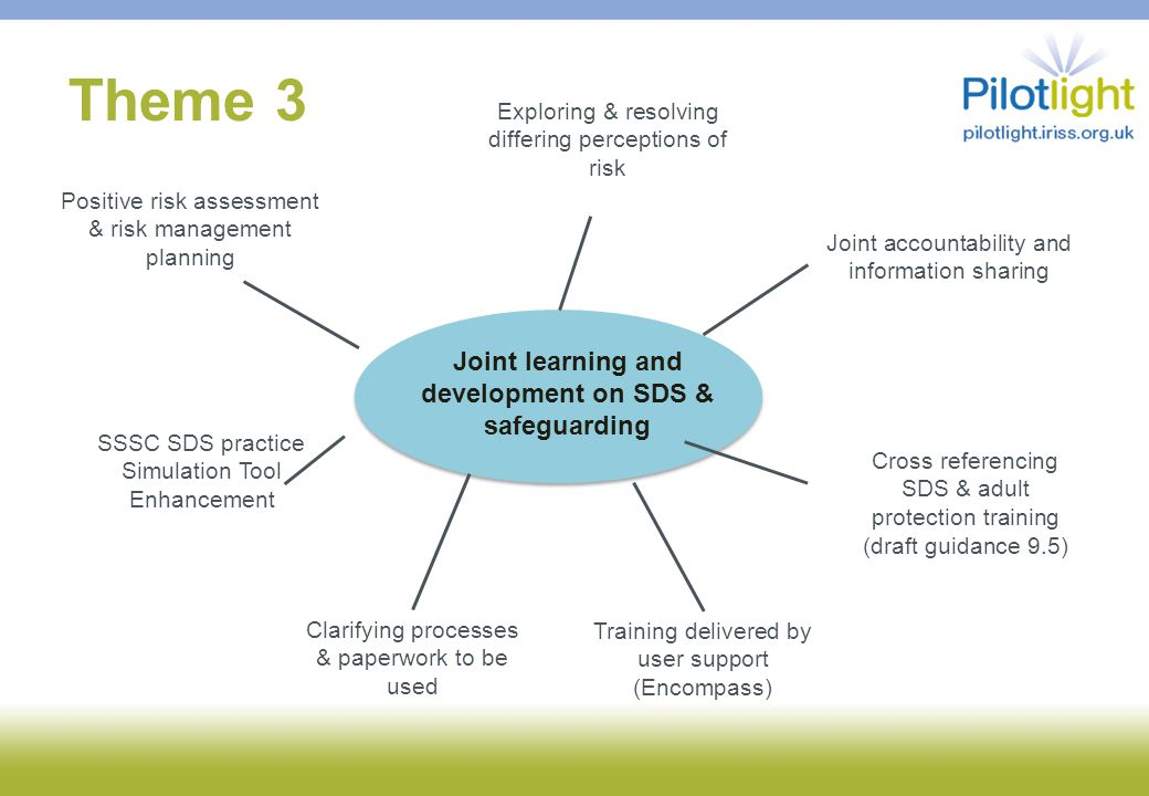 Theme 3 Joint learning and development on SDS & safeguarding Joint accountability and information sharing Exploring & resolving differing perceptions