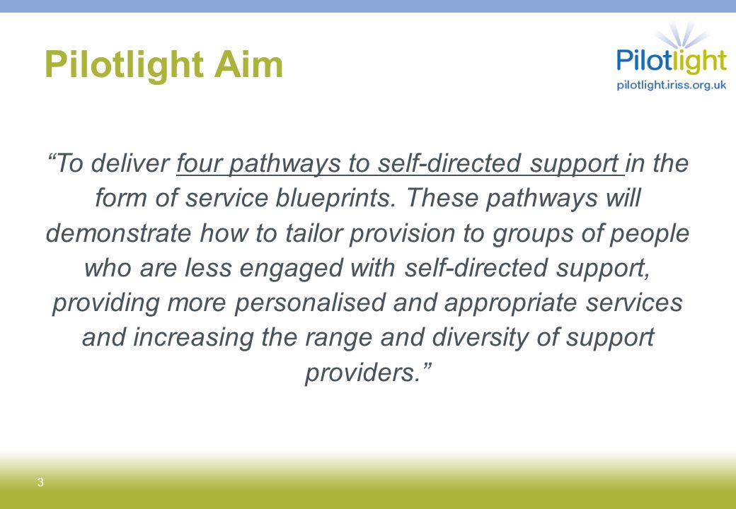 Pilotlight Aim To deliver four pathways to self-directed support in the form of service blueprints.