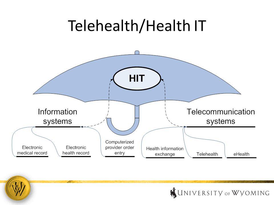 Telehealth/Health IT