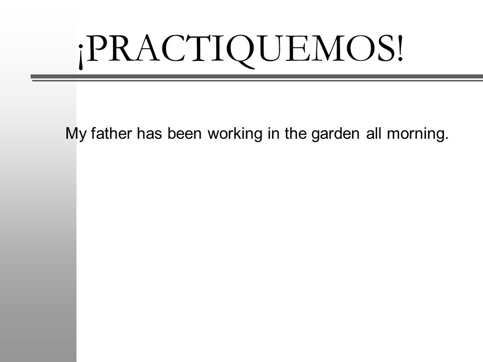 ¡PRACTIQUEMOS! My father has been working in the garden all morning.