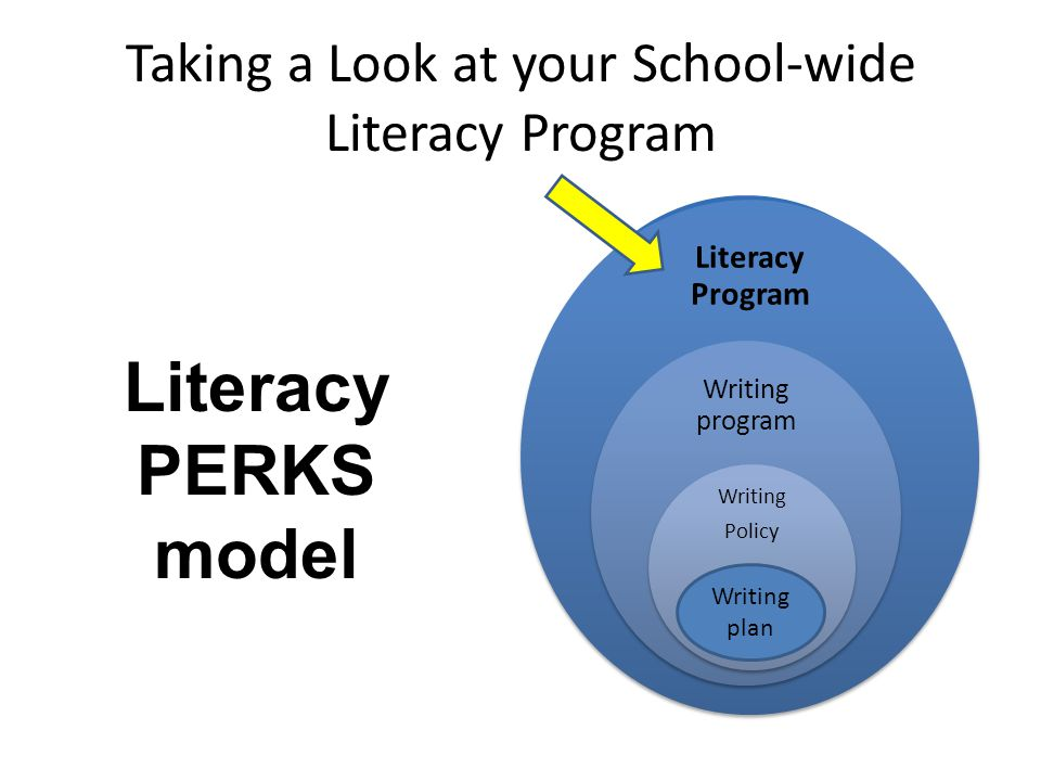 Taking a Look at your School-wide Literacy Program Literacy Program Writing program Writing Policy plan Writing plan Literacy PERKS model