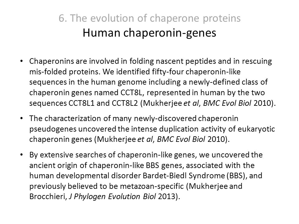 6. The evolution of chaperone proteins Human chaperonin-genes Chaperonins are involved in folding nascent peptides and in rescuing mis-folded proteins
