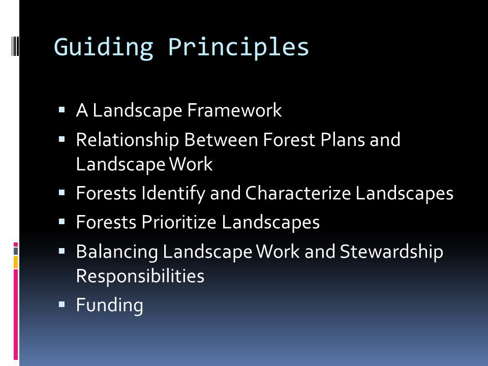 Guiding Principles  A Landscape Framework  Relationship Between Forest Plans and Landscape Work  Forests Identify and Characterize Landscapes  Forests Prioritize Landscapes  Balancing Landscape Work and Stewardship Responsibilities  Funding
