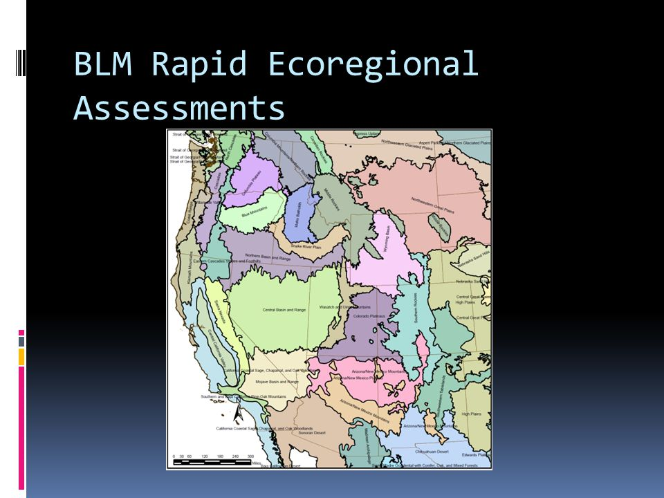 BLM Rapid Ecoregional Assessments
