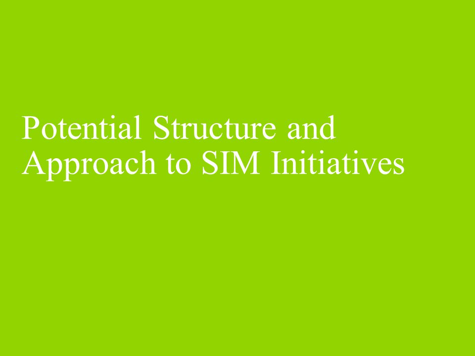 Potential Structure and Approach to SIM Initiatives