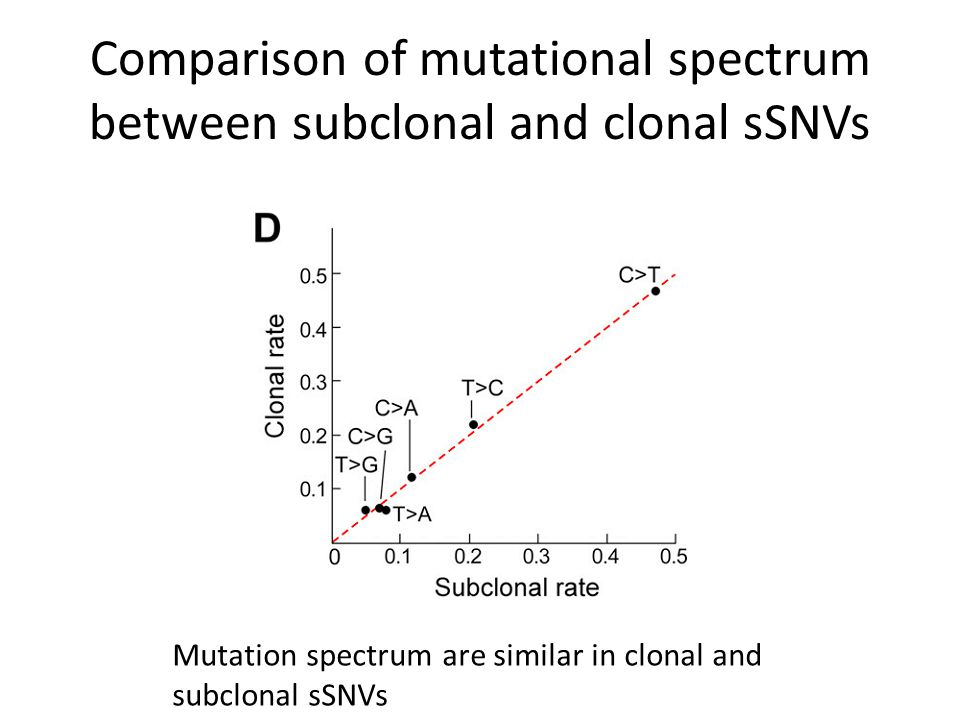 Comparison of mutational spectrum between subclonal and clonal sSNVs Mutation spectrum are similar in clonal and subclonal sSNVs