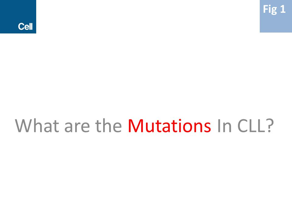 What are the Mutations In CLL? Fig 1