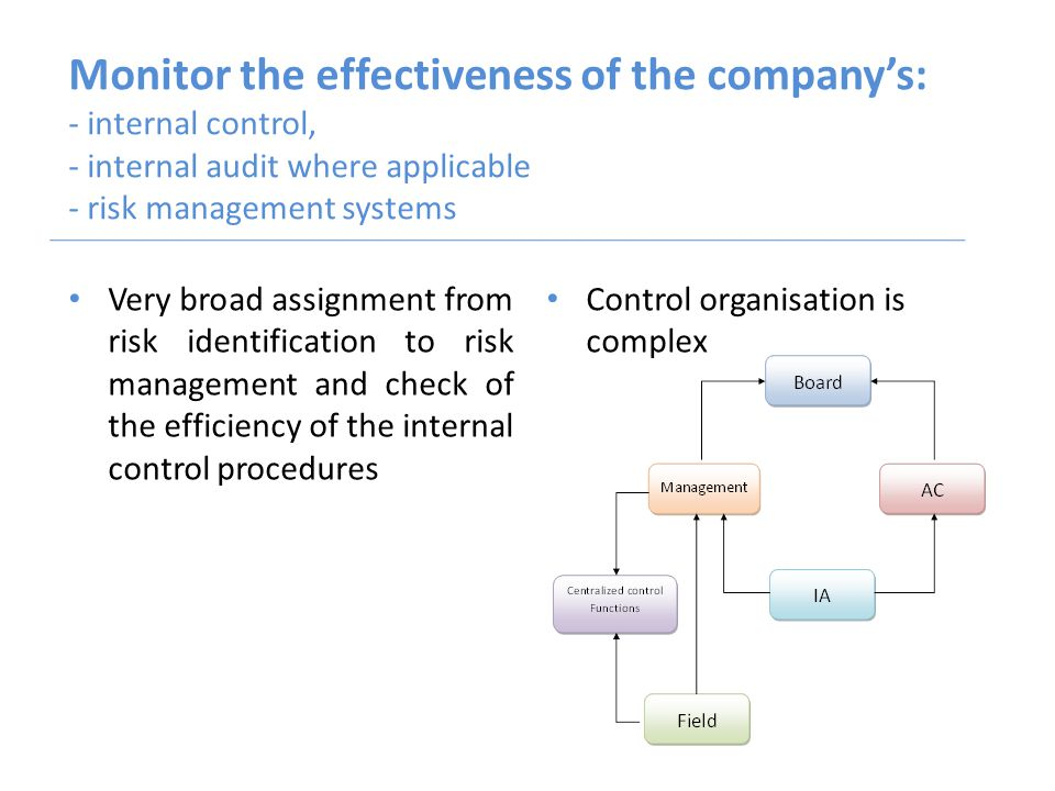 Monitor the effectiveness of the company's: - internal control, - internal audit where applicable - risk management systems Very broad assignment from