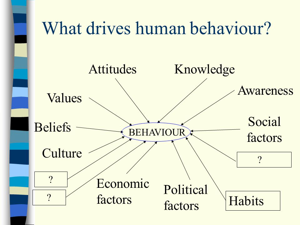 What drives human behaviour.