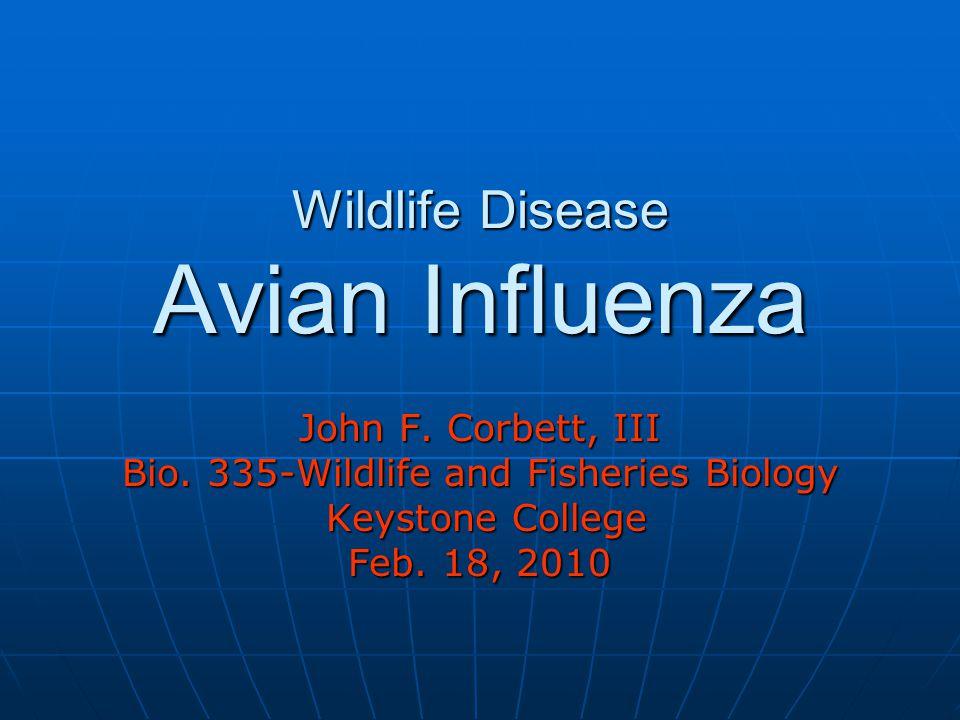 Wildlife Disease Avian Influenza John F. Corbett, III Bio. 335-Wildlife and Fisheries Biology Keystone College Keystone College Feb. 18, 2010