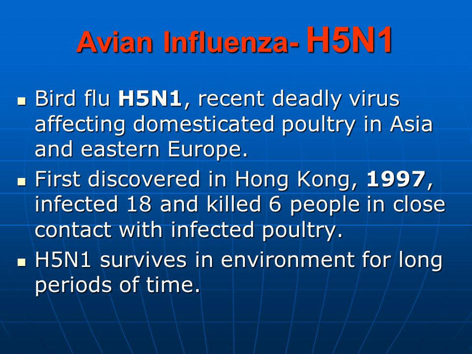 Avian Influenza- H5N1 Bird flu H5N1, recent deadly virus affecting domesticated poultry in Asia and eastern Europe.