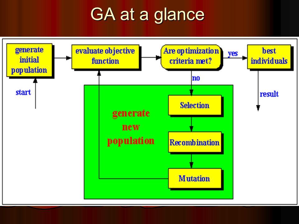 GA at a glance