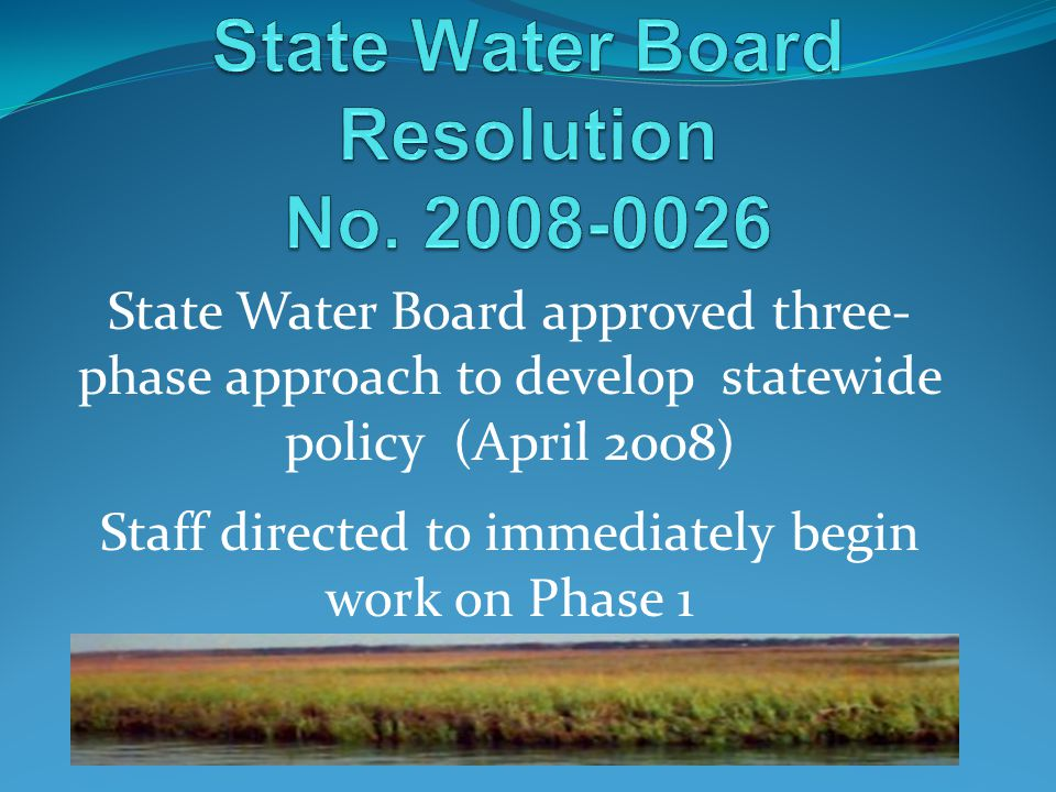 State Water Board approved three- phase approach to develop statewide policy (April 2008) Staff directed to immediately begin work on Phase 1