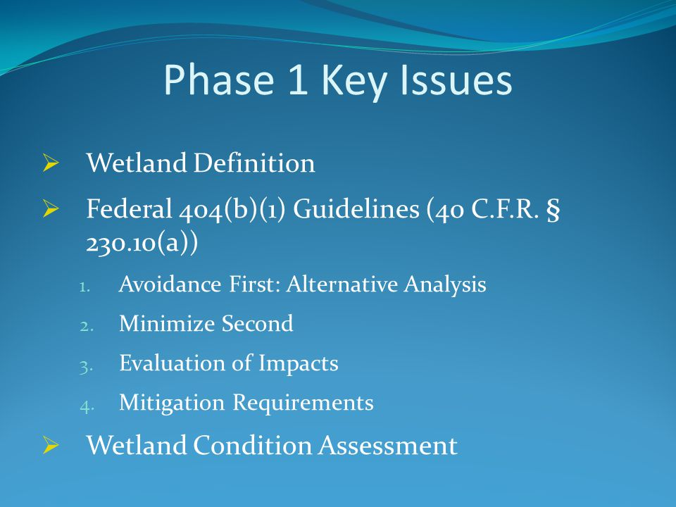 Phase 1 Key Issues  Wetland Definition  Federal 404(b)(1) Guidelines (40 C.F.R. § 230.10(a)) 1. Avoidance First: Alternative Analysis 2. Minimize Se