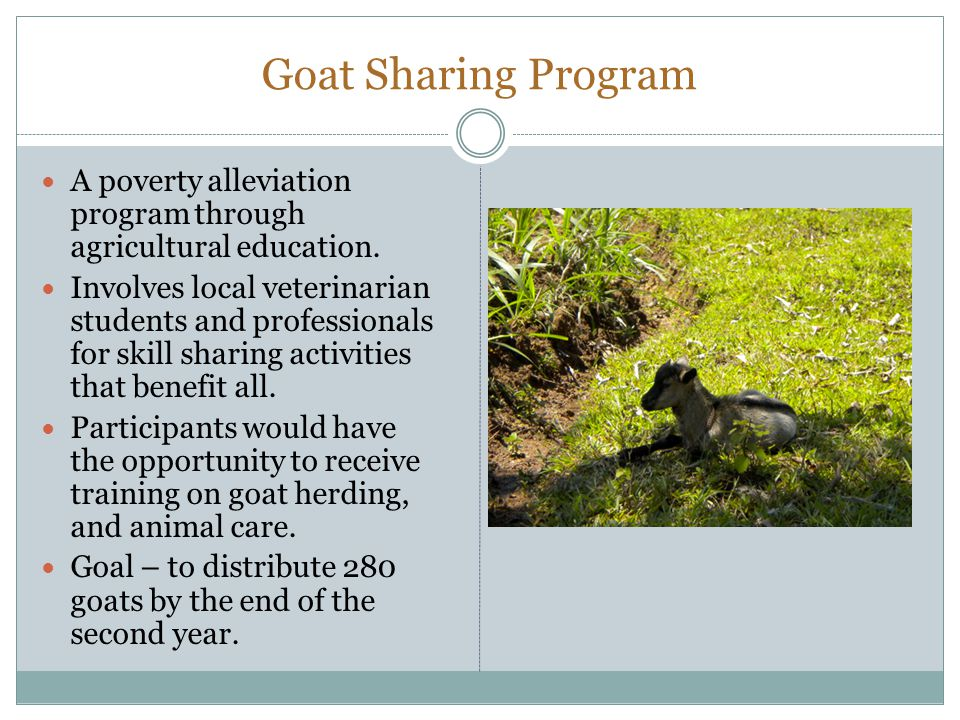 Goat Sharing Program A poverty alleviation program through agricultural education.
