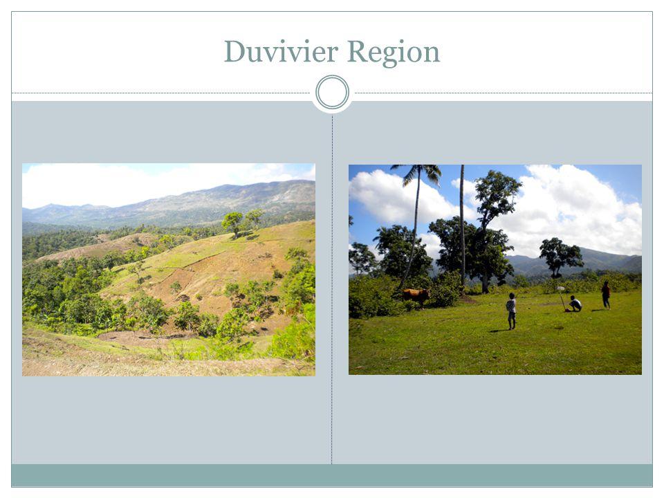 Duvivier Region