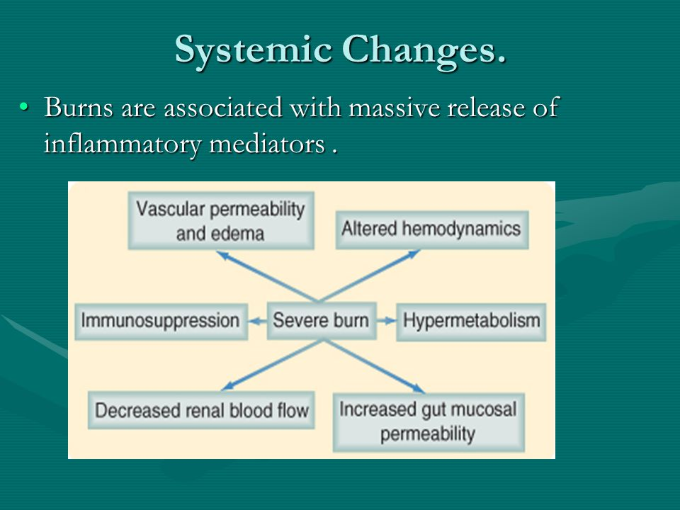 Systemic Changes. Burns are associated with massive release of inflammatory mediators.Burns are associated with massive release of inflammatory mediat
