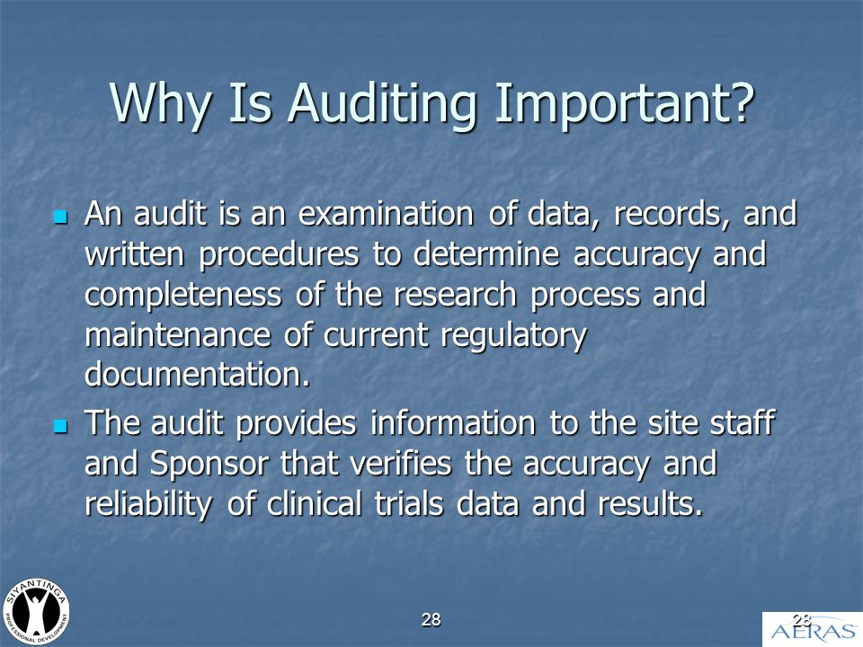 28 Why Is Auditing Important.