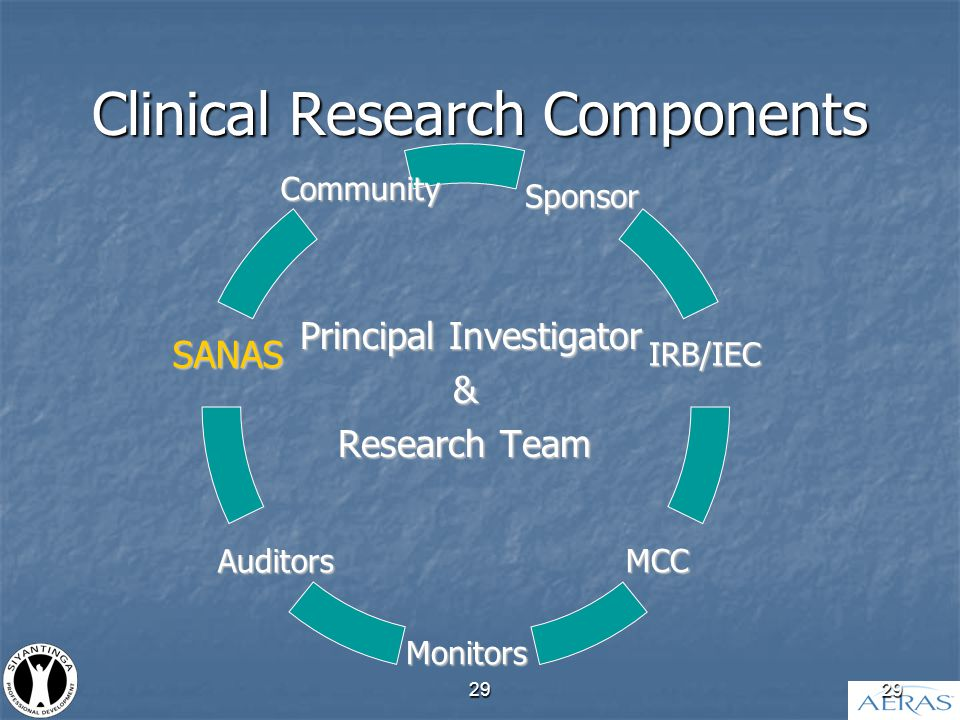 29 Clinical Research Components Principal Investigator & Research Team