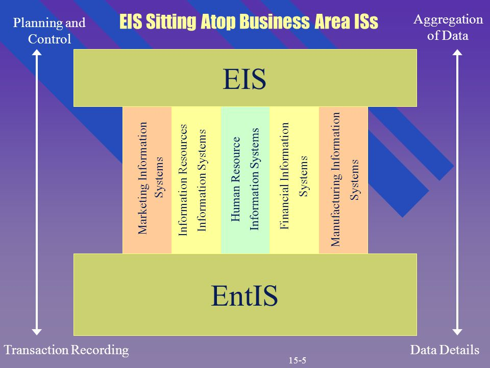 EIS EntIS Marketing Information Systems Information Resources Information Systems Human Resource Information Systems Financial Information Systems Manufacturing Information Systems Planning and Control Transaction Recording Aggregation of Data Data Details EIS Sitting Atop Business Area ISs 15-5