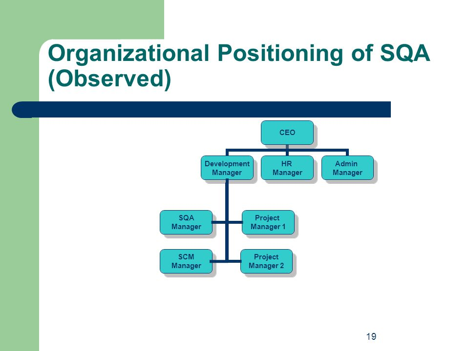 19 Organizational Positioning of SQA (Observed) SQA Manager SQA Manager SCM Manager SCM Manager Project Manager 1 Project Manager 1 Project Manager 2